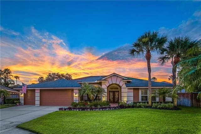 11804 Middlebury Drive, Tampa, FL 33626 (MLS #T3187514) :: Cartwright Realty