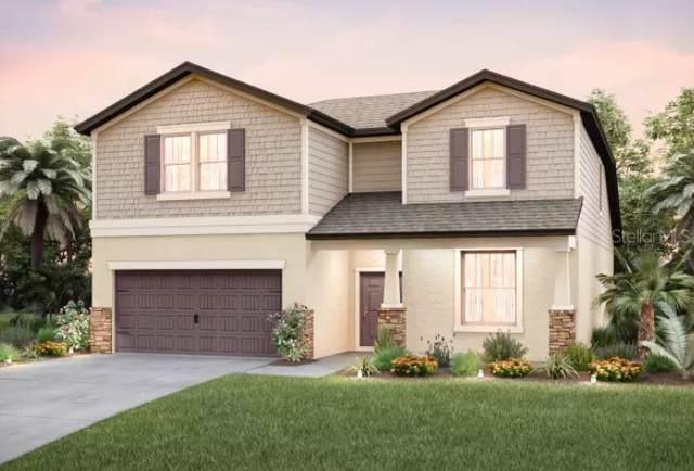 18933 Birchwood Groves, Lutz, FL 33558 (MLS #T3187555) :: Premier Home Experts