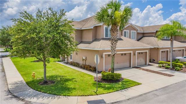 10333 Willow Leaf Trail, Tampa, FL 33625 (MLS #T3187557) :: Baird Realty Group