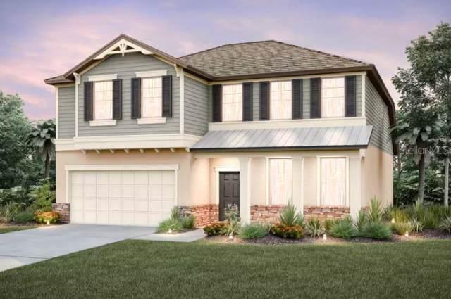 18935 Birchwood Groves, Lutz, FL 33558 (MLS #T3187565) :: Premier Home Experts