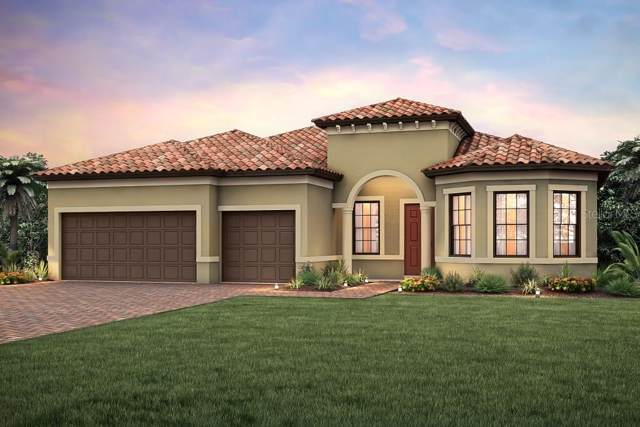 17552 Colebrook Circle, Lakewood Ranch, FL 34202 (MLS #T3187578) :: Sarasota Gulf Coast Realtors