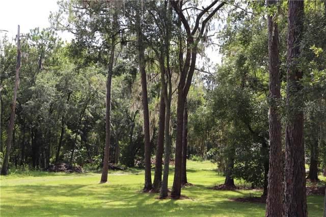 11512 Sweet Fern Drive, Riverview, FL 33569 (MLS #T3187685) :: The Duncan Duo Team