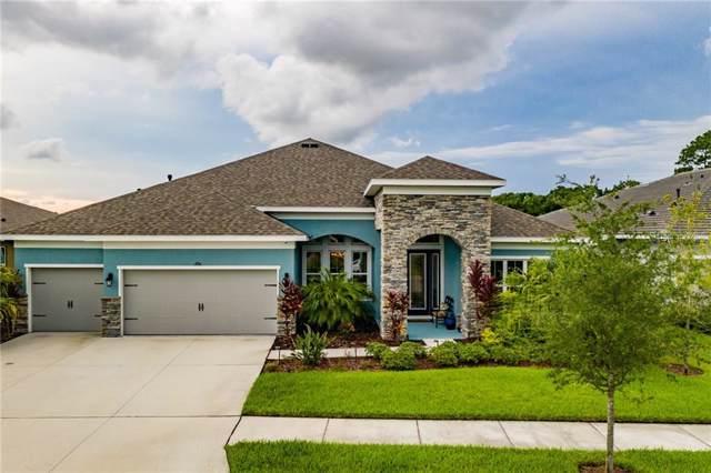 6914 Park Strand Drive, Apollo Beach, FL 33572 (MLS #T3187702) :: Team Bohannon Keller Williams, Tampa Properties