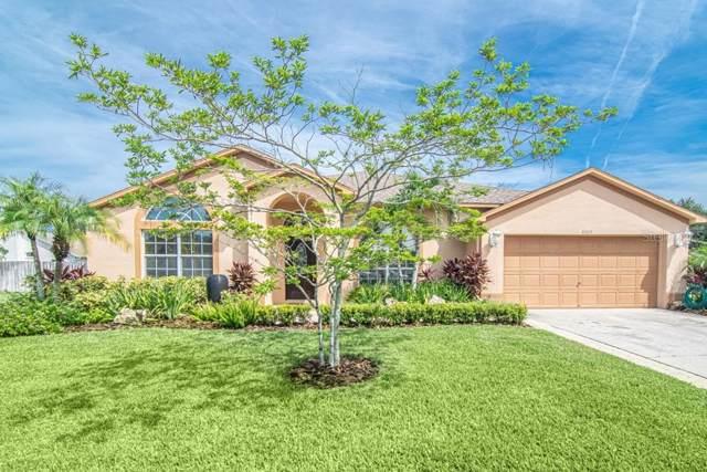 8805 Wyndbrook Court, Odessa, FL 33556 (MLS #T3187738) :: Medway Realty