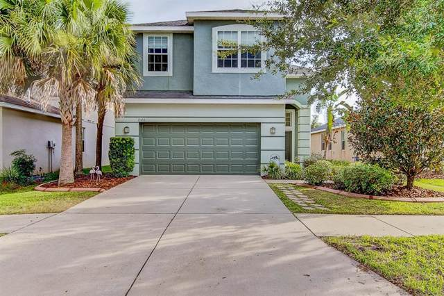 17453 New Cross Circle, Lithia, FL 33547 (MLS #T3187771) :: The Robertson Real Estate Group