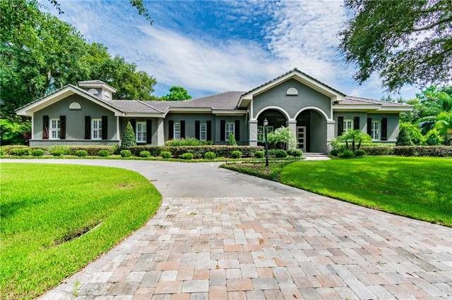 17110 Journeys End Drive, Odessa, FL 33556 (MLS #T3187822) :: Bridge Realty Group