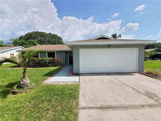 5806 Lady Bug Court, Tampa, FL 33625 (MLS #T3187850) :: Baird Realty Group