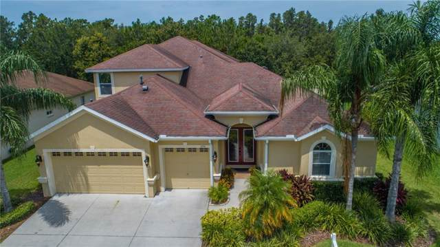 1751 Fircrest Court, Wesley Chapel, FL 33543 (MLS #T3187874) :: Lock & Key Realty