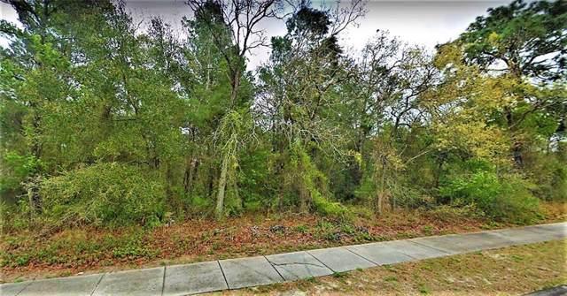 0 Little Road, Land O Lakes, FL 34639 (MLS #T3187896) :: Team Bohannon Keller Williams, Tampa Properties