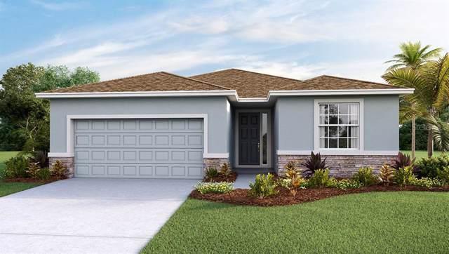 16421 Woodside Glen, Parrish, FL 34219 (MLS #T3187902) :: Medway Realty