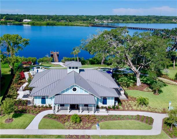 1012 Mango Court, Oldsmar, FL 34677 (MLS #T3187911) :: Paolini Properties Group