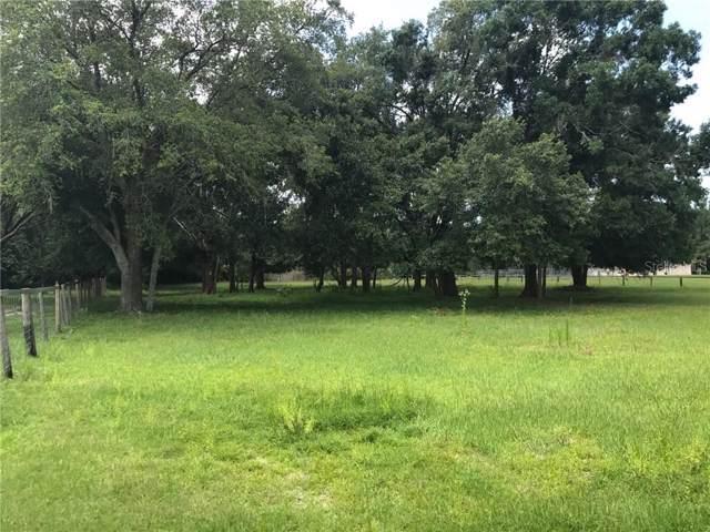 Quail Forest Drive, Tarpon Springs, FL 34688 (MLS #T3187912) :: Lovitch Realty Group, LLC