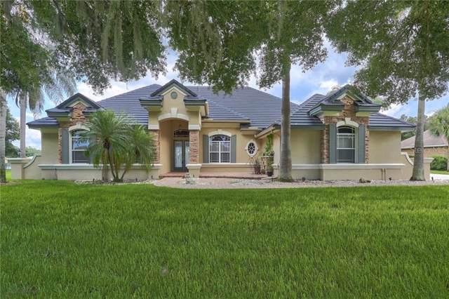 18127 Patterson Road, Odessa, FL 33556 (MLS #T3187960) :: GO Realty
