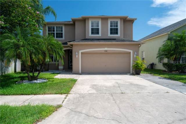 7730 Bingham Court, Tampa, FL 33625 (MLS #T3187982) :: The Duncan Duo Team