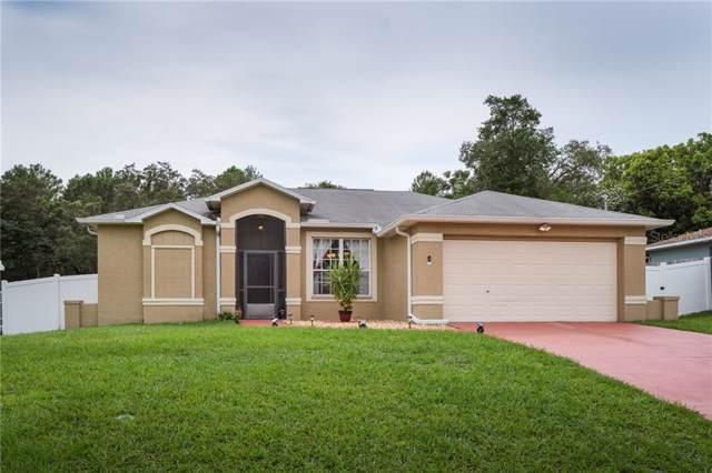 3187 Lema Drive, Spring Hill, FL 34609 (MLS #T3187989) :: Team Pepka