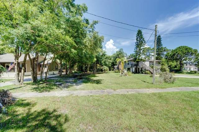 Woodward Avenue, Oldsmar, FL 34677 (MLS #T3188032) :: Paolini Properties Group