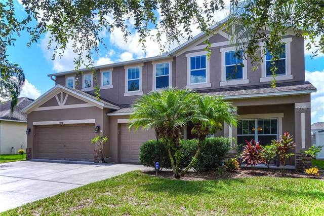 1523 Rhodeswell Lane, Dover, FL 33527 (MLS #T3188171) :: The Duncan Duo Team