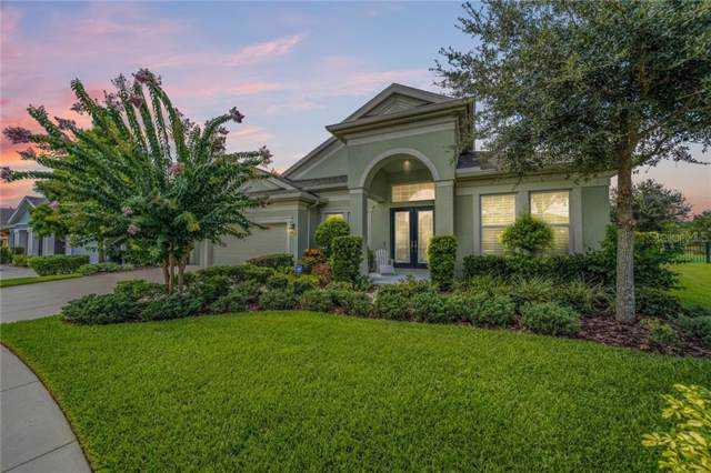 7221 Bowspirit Place, Apollo Beach, FL 33572 (MLS #T3188198) :: Medway Realty