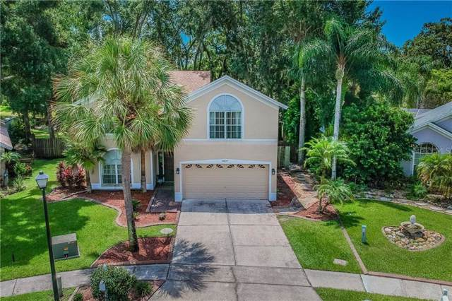 4637 Hidden Shadow Drive, Tampa, FL 33614 (MLS #T3188201) :: The Robertson Real Estate Group