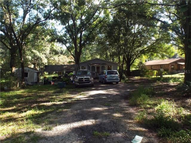 26311 Chianina Drive, Zephyrhills, FL 33544 (MLS #T3188220) :: NewHomePrograms.com LLC
