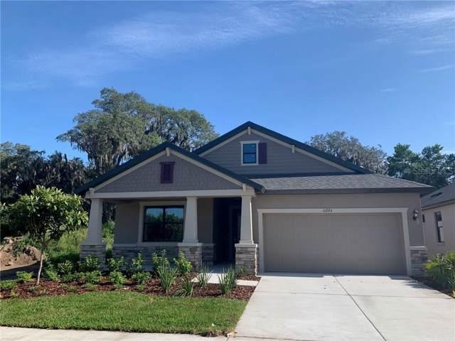 11224 Paddock Manor Avenue, Riverview, FL 33569 (MLS #T3188224) :: Charles Rutenberg Realty