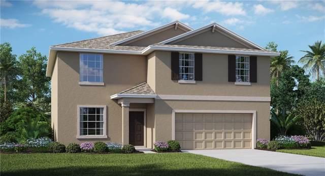 6636 Mineral Springs Road, New Port Richey, FL 34653 (MLS #T3188227) :: Team 54