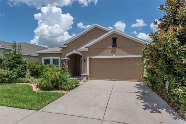 10445 Flagstaff Falls Avenue, Riverview, FL 33578 (MLS #T3188284) :: Griffin Group