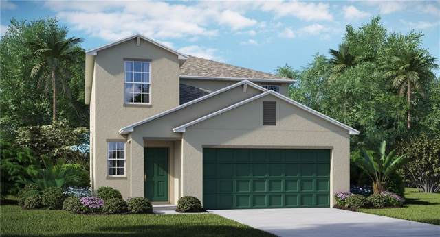 13532 Marble Sands Court, Hudson, FL 34669 (MLS #T3188404) :: Baird Realty Group