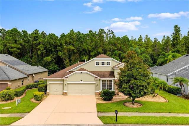 16722 Ivy Lake Drive, Odessa, FL 33556 (MLS #T3188490) :: The Duncan Duo Team