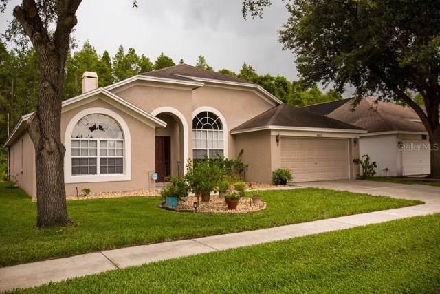 18033 Palm Breeze Drive, Tampa, FL 33647 (MLS #T3188492) :: Team Bohannon Keller Williams, Tampa Properties