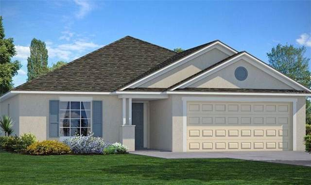 10042 Geese Trail Circle, Ruskin, FL 33573 (MLS #T3188571) :: GO Realty
