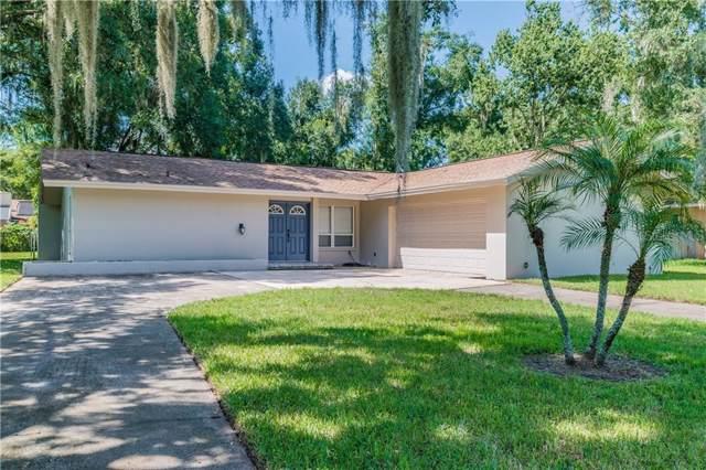 3847 Lake Joyce Drive, Land O Lakes, FL 34639 (MLS #T3188617) :: Cartwright Realty