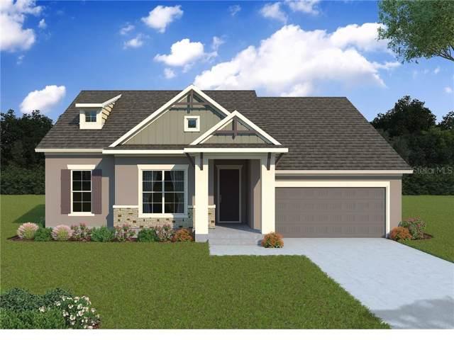 16659 Vibrato Lane, Land O Lakes, FL 34638 (MLS #T3188633) :: The Duncan Duo Team