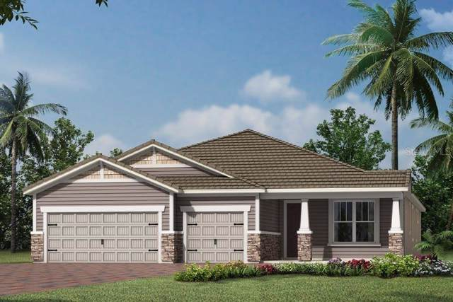 5620 Morning Sun Drive, Sarasota, FL 34238 (MLS #T3188895) :: Lovitch Realty Group, LLC