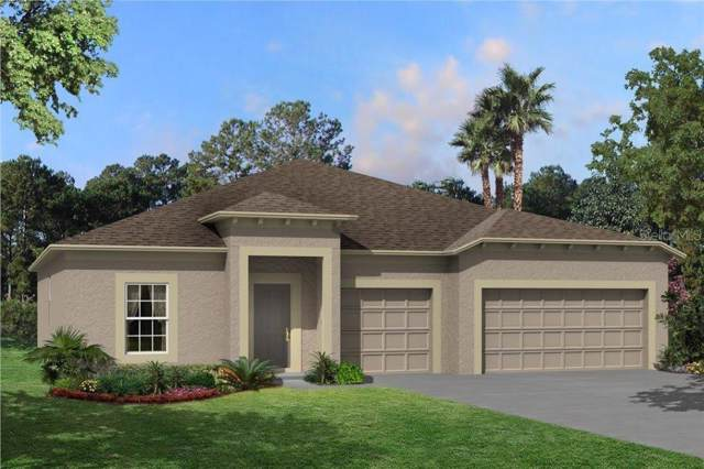 12373 Criollo Road, Spring Hill, FL 34610 (MLS #T3188979) :: Lovitch Realty Group, LLC