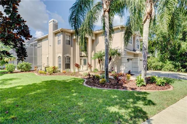 6012 Native Woods Drive, Tampa, FL 33625 (MLS #T3189161) :: GO Realty