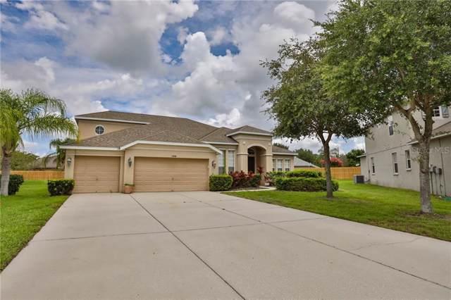 11418 Dutch Iris Drive, Riverview, FL 33578 (MLS #T3189175) :: Griffin Group