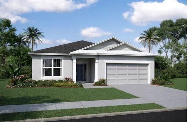 5146 Turtle Bay Drive #3138, Wesley Chapel, FL 33545 (MLS #T3189194) :: Ideal Florida Real Estate
