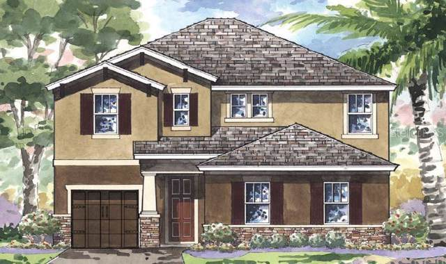 4850 Ballantrae Boulevard, Land O Lakes, FL 34638 (MLS #T3189356) :: Lockhart & Walseth Team, Realtors