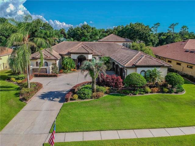 6015 Audubon Manor Boulevard, Lithia, FL 33547 (MLS #T3189478) :: The Brenda Wade Team