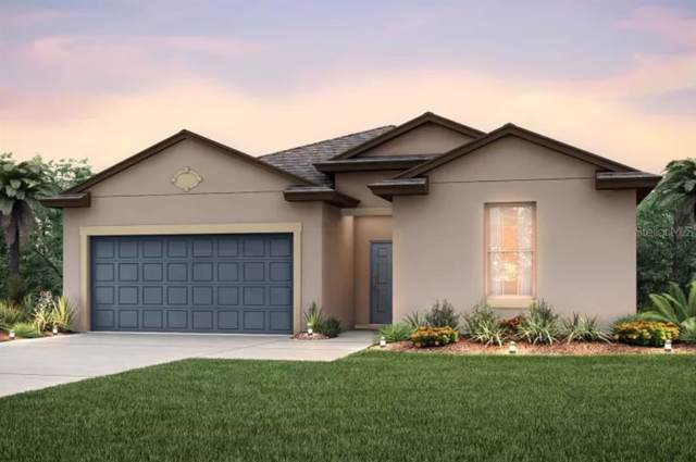 12882 Palapa Loop, Spring Hill, FL 34610 (MLS #T3189540) :: Lovitch Realty Group, LLC