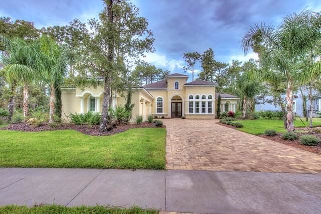 2406 Wild Turkey Creek Lane, Port Orange, FL 32128 (MLS #T3189614) :: Team Bohannon Keller Williams, Tampa Properties