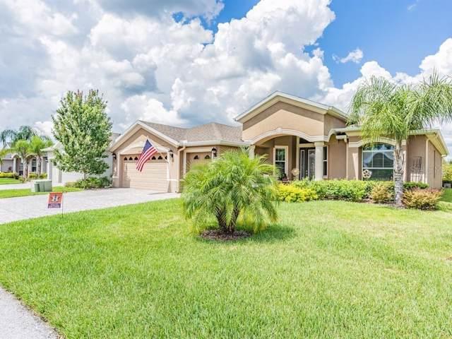 10313 Hyannisport Loop, San Antonio, FL 33576 (MLS #T3189738) :: Charles Rutenberg Realty