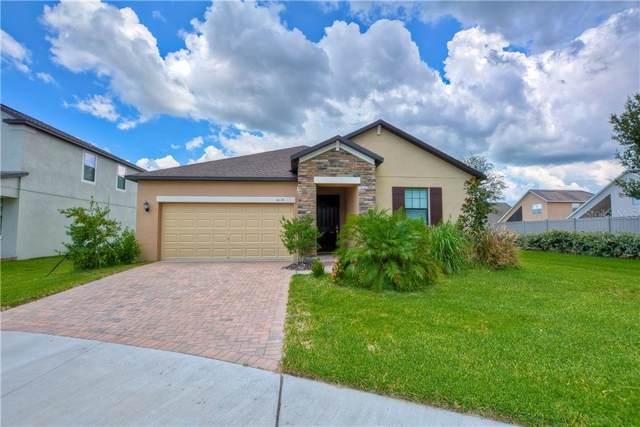 4516 Coachford Drive, Wesley Chapel, FL 33543 (MLS #T3189765) :: Team Bohannon Keller Williams, Tampa Properties