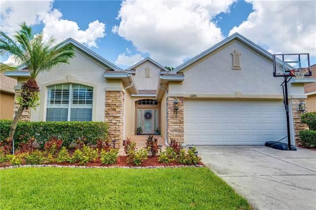 11245 Blacksmith Drive, Tampa, FL 33626 (MLS #T3189874) :: Team 54