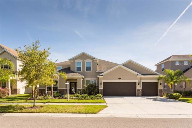 10513 Mistflower Lane, Tampa, FL 33647 (MLS #T3189878) :: Charles Rutenberg Realty