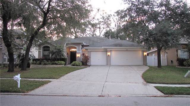 2009 Raven Manor Drive, Dover, FL 33527 (MLS #T3190350) :: Team Bohannon Keller Williams, Tampa Properties