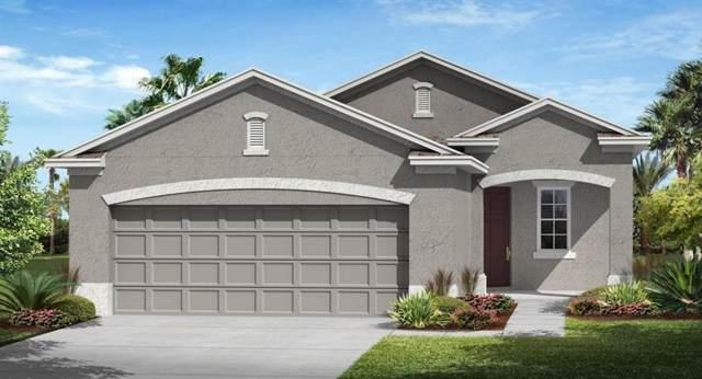 3450 Sagebrush Street, Harmony, FL 34773 (MLS #T3190387) :: The Brenda Wade Team