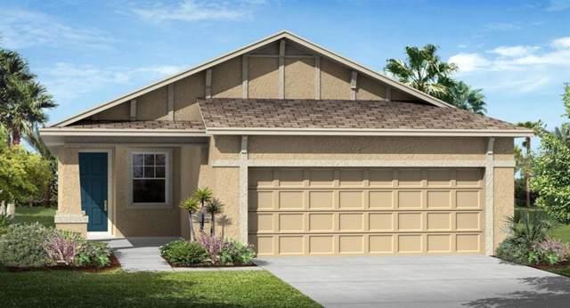3464 Sagebrush Street, Harmony, FL 34773 (MLS #T3190395) :: The Brenda Wade Team