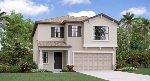 10209 Amazing Grace Avenue, Riverview, FL 33578 (MLS #T3190432) :: Charles Rutenberg Realty